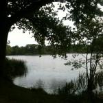 Jeg nyder naturen og de smukke omgivelser