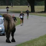 Marathon Knuthenborg 2012-09-15 098